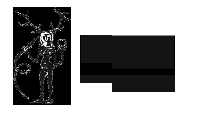piracTRANSPA